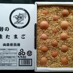 能勢 味たまごは美味しい!! 大阪もん 2年連続優秀賞を受賞!!!